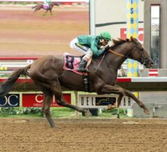 Beach View Upsets G3 Cougar II