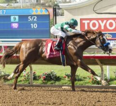 Pat O'Brien Stakes Preview: Loaded Field Ready for Showdown at Del Mar