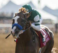 Catalina Cruiser Romps in G2 San Diego