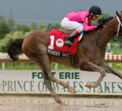 Wonder Gadot Easily Wires $400,000 Prince of Wales