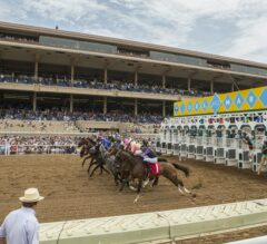 FREE Win Tips for Let It Ride Saturday at Del Mar