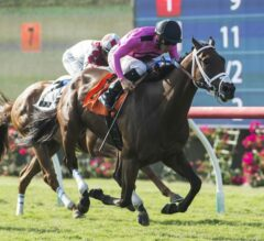 Fly to Mars Flits Home First in $150,000 California Dreamin'