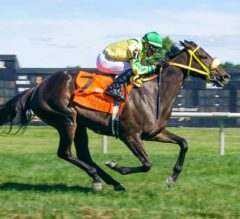 Tricky Escape Sneaks Up to Win the G3 Robert G. Dick Memorial