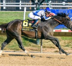 Elate Returns With a Roar in G2 Delaware Handicap