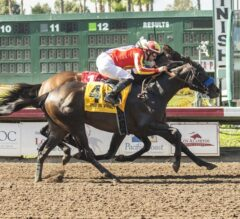 Once On Whiskey Up In Time In G3 Los Alamitos Derby