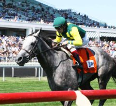 Real Story Tells It Like It Is In The G3 American Derby