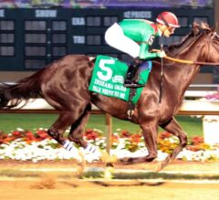 Talk Veuve to Me Romps in G3 Indiana Oaks