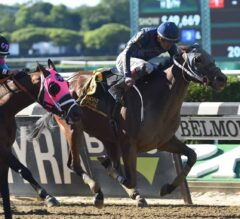 Dixie Serenade Blows Up G3 Victory Ride