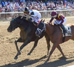 Limousine Liberal Topples G2 Belmont Sprint Championship