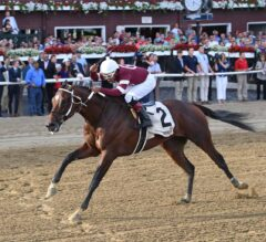 Stone Cold Tenfold in the G2 Jim Dandy