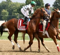Competitive Field Ready for John A. Nerud Stakes