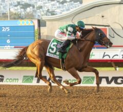 Racing Dudes Three Stars of the Week: Accelerate Leaves No Doubt