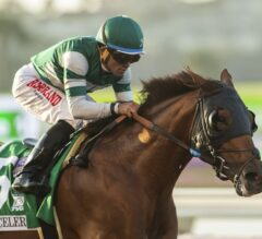Accelerate Cruises in G1 Pacific Classic