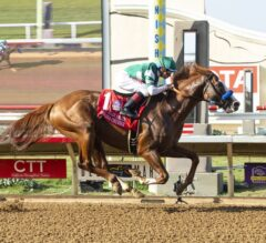 Catalina Cruiser Does Exactly That in G2 Pat O'Brien