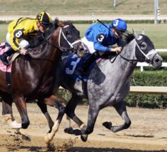 Cox Trainees Take G3 West Virginia Governor's Stakes