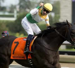 Neepawa No Longer a Bridesmaid After $400,000 Breeders' Stakes