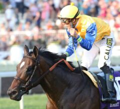 Joe Hirsch Turf Classic Preview: Robert Bruce Stretches Out