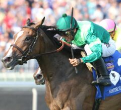 Sistercharlie Supercharged in G1 Beverly D.