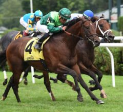 Raging Bull Punches Home Victorious in G2 Hall of Fame