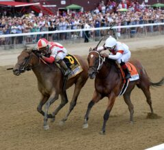 Separationofpowers Outbattles Mia Mischief in G1 Test