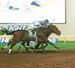 Lone Sailor Sails to Victory in the G3 Oklahoma Derby