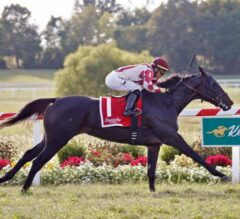 Osare Soars in $300,000 Dueling Grounds Oaks