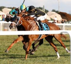 Channel Cat Outduels Cullum Road in $400,000 Dueling Grounds Derby