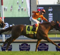 Johnny Bear Defends Title in G1 Northern Dancer Turf