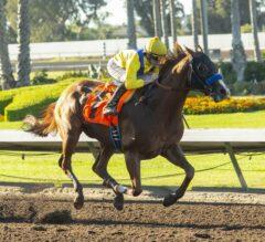 Dabster Dances Home in $100,000 Los Al Special