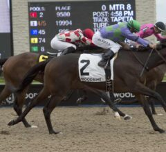 Gamble's Ghost Surges Late, Takes $100,000 Belle Mahone