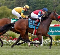 Insta Erma Prevails in G3 KY Downs Ladies Turf