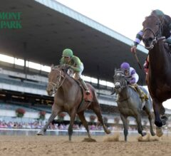 See 2018 Jockey Club Gold Cup Stakes Contenders