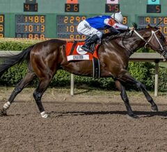 Limation Makes Easy Work of G3 Super Derby