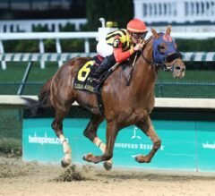 Mind Your Biscuits Cruises in G3 Lukas Classic