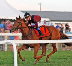 Miss Technicality Dominates $400,000 Exacta Systems Juvenile Fillies