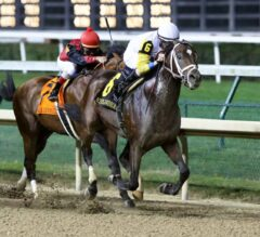 Clark Handicap Preview: Seeking the Soul Ready to Defend Title
