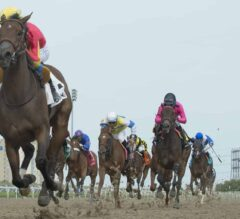 Shamrock Rose Clears Off in $100,000 La Lorgnette