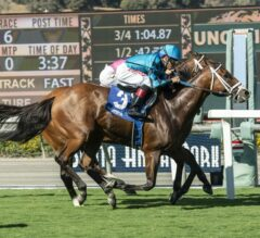 Stormy Liberal Earns Heads-Up Win in G3 Eddie D