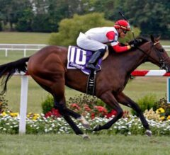 Moonlight Romance Magical in $500,000 KY Downs Juvenile Turf Sprint