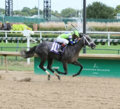 Handicapping 301: Picking Winners in 2YO Maiden Races
