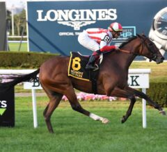 Newspaperofrecord Romps in G2 Miss Grillo
