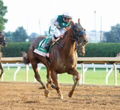 Blue Prize Trips Up, Tops G1 Spinster