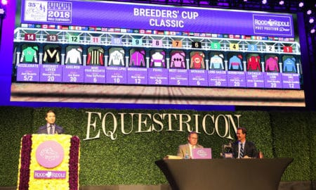 Breeders' Cup Classic Draw