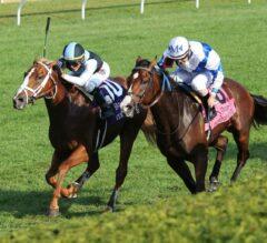 Current Prevails Over Henley's Joy in G3 Bourbon