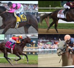 East vs West: Breeders' Cup Classic Division