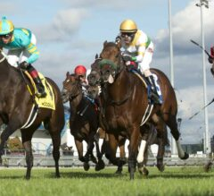 Hembree Claims Victory in G2 Nearctic