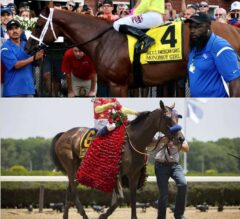 East vs West: Breeders' Cup Distaff Division