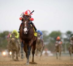 Complexity Clearly Best in G1 Champagne