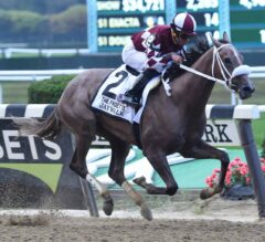 Jaywalk Cuts Across Dirt Sharpest in G1 Frizette