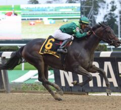 Wow Cat Claims G1 Beldame